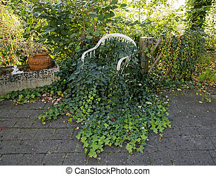 Old white chair with ivy