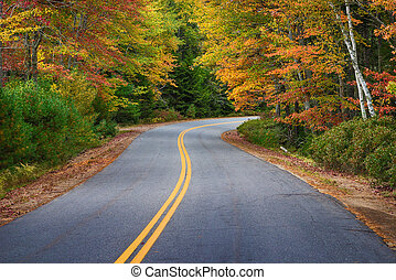 Winding road through autumn trees in New England - Winding...