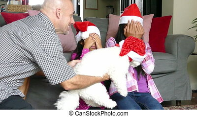 Dad Gives Xmas Puppy To Daughters - Two cute Asian sisters...