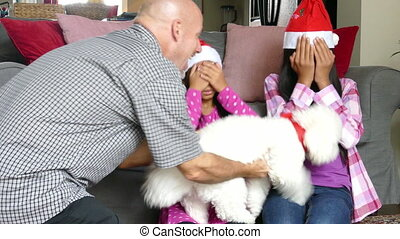 Dad Gives Fluffy Puppy To Daughters - Two cute Asian sisters...