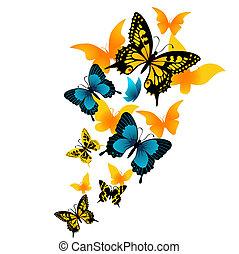 vector, Ilustración, mariposa