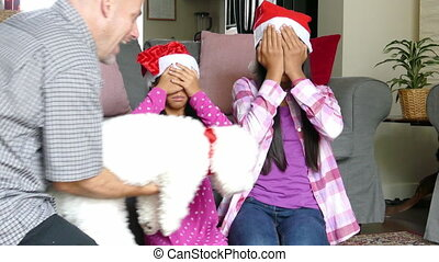 Sisters Get Puppy For Christmas - Two cute Asian sisters are...