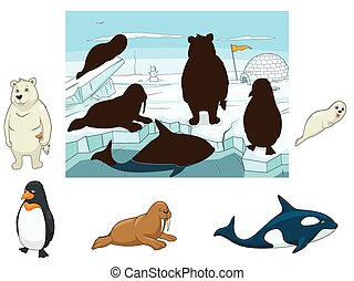 Arctic animals educational game for kids vector illustration