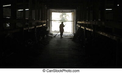 A cleaner on a farm for breeding co - Big barn. Cows are...