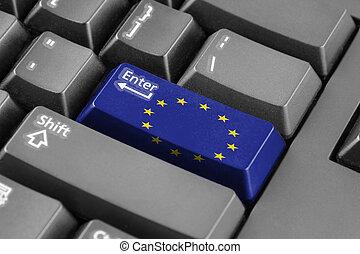 Enter button with European Union Flag