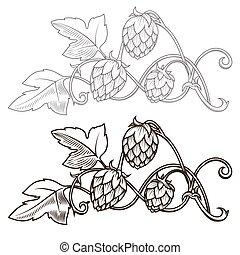 Hops ornament vector illustration - Stylish hop branch hand...