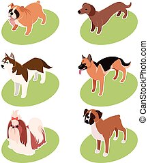 Collection of isometric dogs - Vector set of isometric icons...