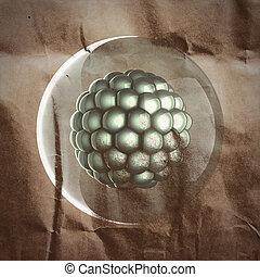 Un, micro, célula, Científico,...