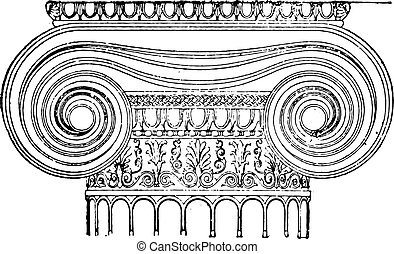 Ionic capital, vintage engraving.