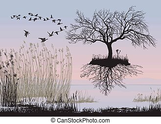 Flying apple tree without leaves - vector illustration of a...