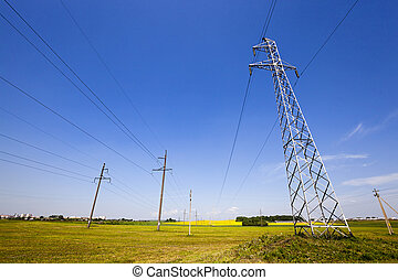 electric line in the agricultural field Away rape blossoms...