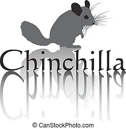 Chinchilla vector art