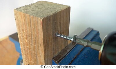 wood screw being drilled into a boa - A wood screw being...