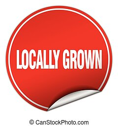 locally grown round red sticker isolated on white