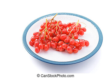 Viburnum berries on a saucer isolated on a white background...
