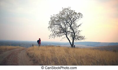 man and female man woman tourists are on road lonely tree...