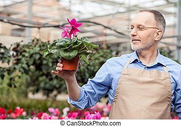 Skillful senior garden worker at plant nursery - Cheerful...