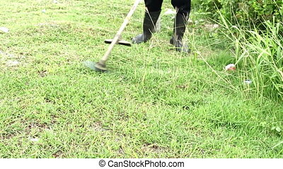 Trimming Grass. Grass cutting service. A worker mowing the...