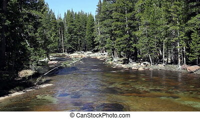 Merced River Yosemite Park CA - River Flowing Gently Between...