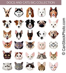 Set flat popular Breeds of Cats and Dogs icons.