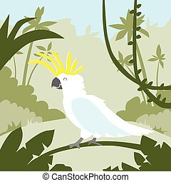 Parrot White Cockatoo Sitting on Tree Branch Tropical Jungle...