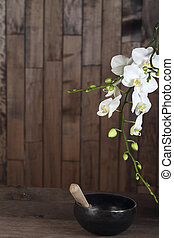 White blossom orchid - Flowers white orchid on a dark wooden...