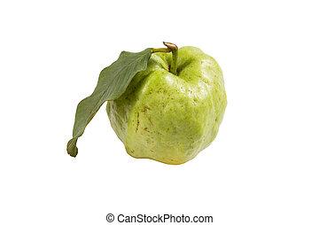 葉, フルーツ, 背景, 新たに, 白, グアバ