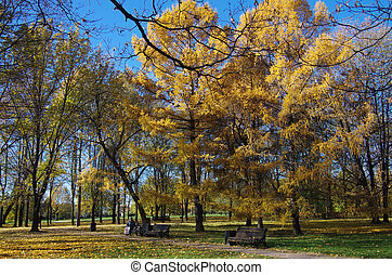 MOSCOW, RUSSIA - October 21, 2015: Park at the Kolomenskoye...