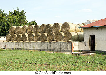 Straw bales - Many straw bales being stacked on a storage...