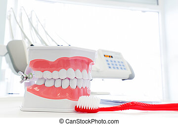 Clean teeth denture, dental jaw model and toothbrush in...