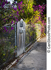Key West street - View of old wooden gate on quaint street...