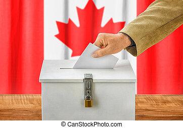 caja,  Canadá,  -, poniendo, votación, papeleta, hombre