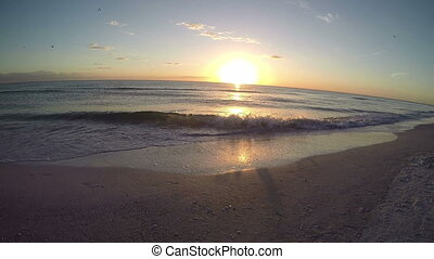 Saint Petersburg Florida Beach 5 - Saint Petersburg Florida...