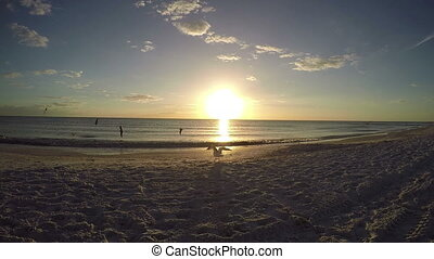 Saint Petersburg Florida Beach 2 - Saint Petersburg Florida...