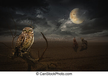 full moon - owl on a dead branch in a night steppe,...