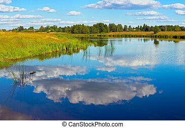 Summer rushy lake view with clouds reflections.