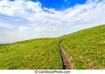 trail - mountain trail