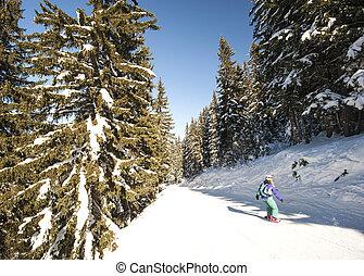 Skiers on piste through trees - Skiers on a ski slope piste...