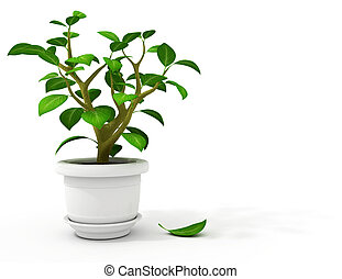 flowerpot in white pot ? 3d-illustration, isolated on white...
