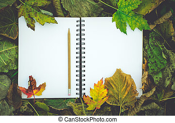 notebook with blank covers as copy space on fallen autumn leaves background, Top View, Retro Toned Image