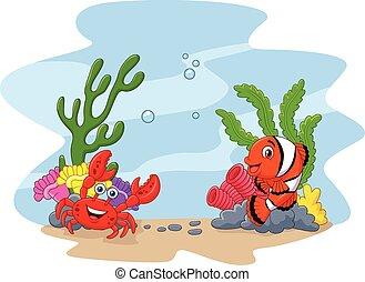 Cartoon clown fish and crab