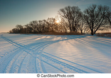 snow-covered field and bare trees at sunset
