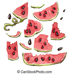 Watermelon Slices Set - Set of Watercolors Hand Painted...