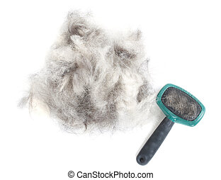Dog Grooming Brush and Hair - A pile of dog hair (German...