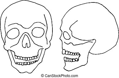 hand draw a skull for decoration of cards, labels, posters, banners for Day of the Dead celebrations, Halloween Party