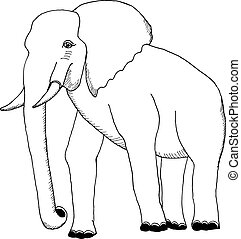 hand draw an elephant in the style of the sketch to design cards, textiles, coloring, tattoo white