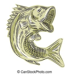 Largemouth Bass Fish Etching - Etching engraving handmade...