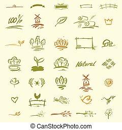 Set of natural elements for design.