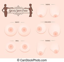 Breast Shape chart - Breast shape chart with beautiful women...