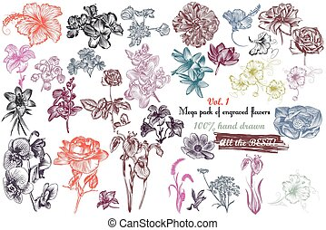 Mega collection of vector  high detailed engraved flowers 100 hand drawn.eps